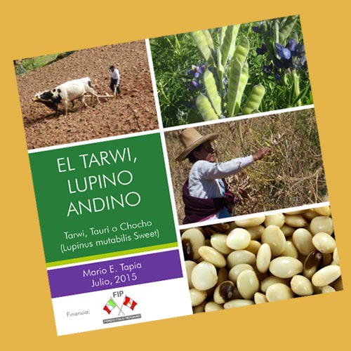 El Tarwi, El Lupino Andino
