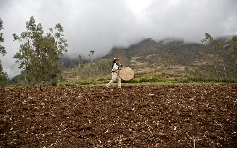 Agricultor, músico y sembrador de vida