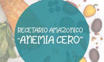 Recetario Amazónico Anemia Cero