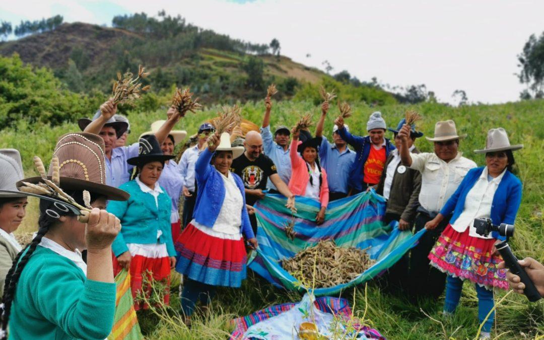 """Con Sabor a Perú: """"La Tierra del Tarwi"""""""