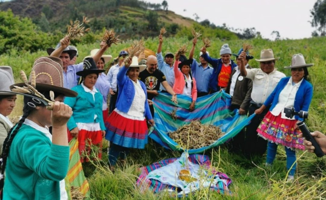 Agricultores Huaylas